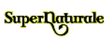 SuperNaturale blog Logo